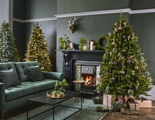 John Lewis Pre lit Kensington Tree 7ft